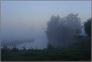Morgenstimmung in den Auen... Niederrhein *Nordrhein-Westfalen*