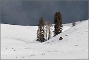 trügerisch... Wetterverhältnisse *Yellowstone Nationalpark*